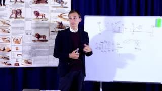 2. Dezvoltarea Marcajelor Adevărului, partea a II-a