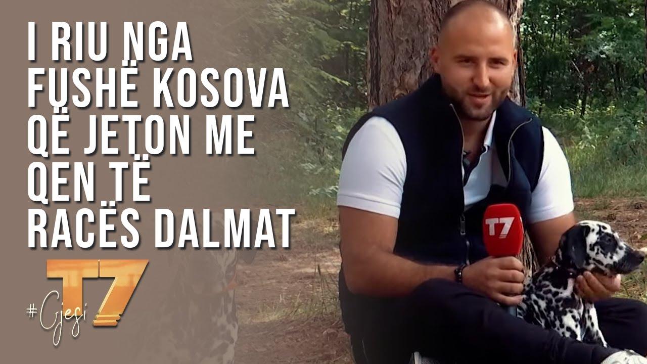 #gjesi: I riu nga Fushë Kosova që jeton me qen të racës Dalmat