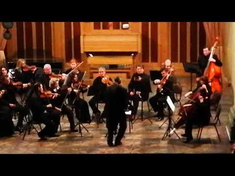 Матей Поп. В середине неба. Академический камерный оркестр РОФ.