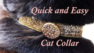 DIY Easy and Quick Cat Collars You Can Make for Your Kitty Buttons and Ribbon
