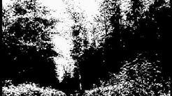 Domina Hypnose - Deine Entführung - Kidnapping durch die Fürstin