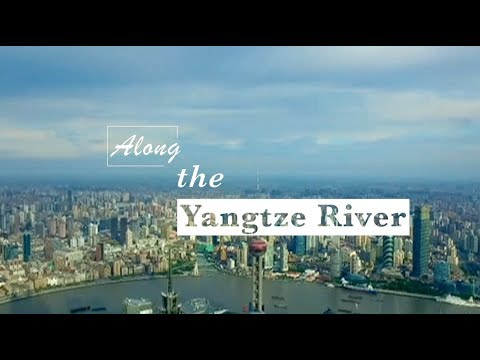 Shanghai Plays Leading Role in Promoting High-quality Development of Yangtze River Delta