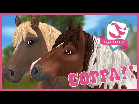 More Curly Horses & COPPA Comments Answered!