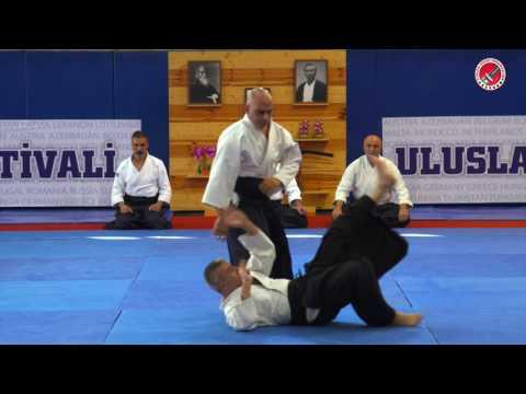 7th International Aikido Festival, Lebanon