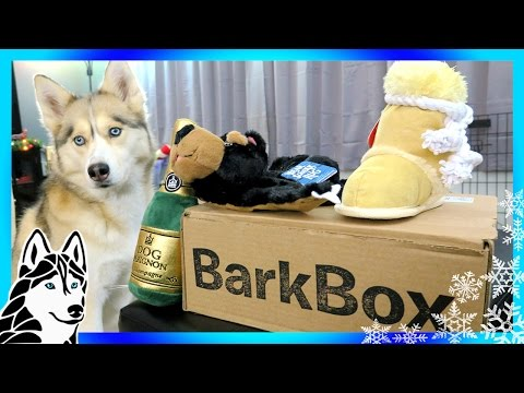 BARK BOX UNBOXING with Gone to the Snow Dogs