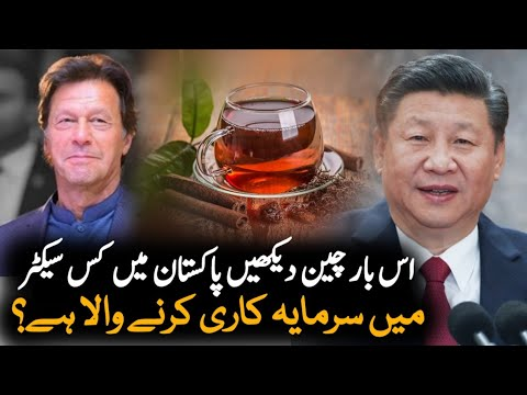Chinese Company to invest in Pakistan's Black Tea Sector | Economy News | Pakistan China
