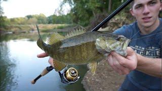 Creek Fishing Smallmouth Bass -- VLOG #8