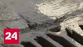 Хмуро и сыро: скользские дороги испытывают автомобилистов