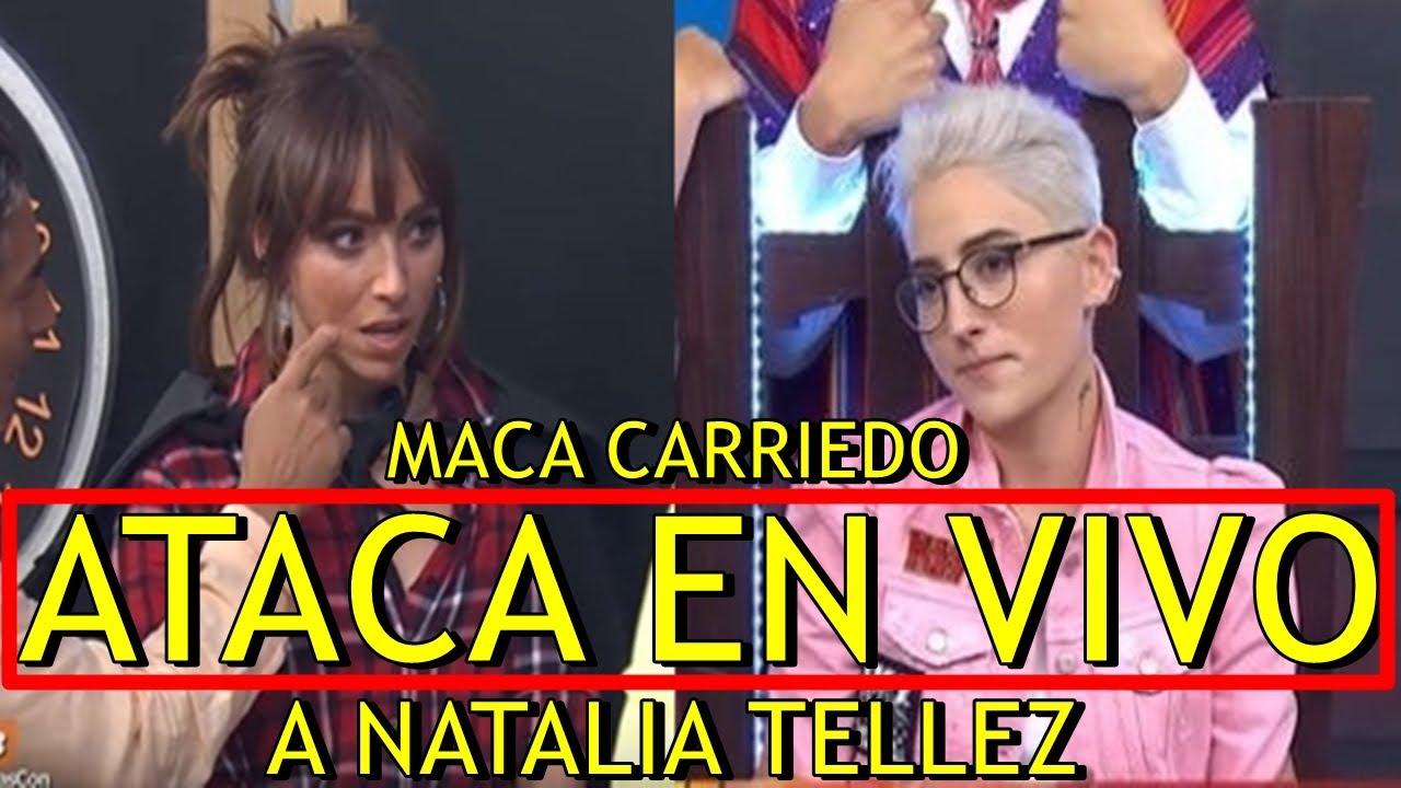 Maca Carriedo EXPLOTA CONTRA Natalia Téllez EN VIVO tras NO AGUANTAR BROMA - YouTube