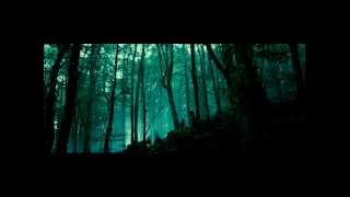 Rammstein + The Lord of the Ring (Mein Herz Brennt + the Fellowship of the Ring)