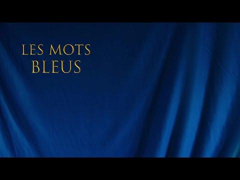 Johan Papaconstantino - Les mots bleus mp3 baixar