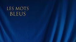 Johan Papaconstantino - Les mots bleus (Reprise de Christophe)