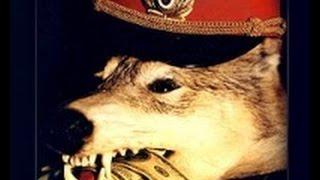 видео Луховицы - огуречный край