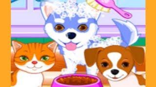 Мультик про кошку и собаку. Добрые мультфильмы для малышей. Игры про котиков и собачек для детей