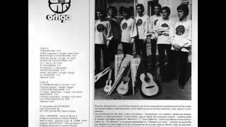 ORTIGA CANTO NUEVO DE CHILE 1978 INEDITO ALBUM COMPLETO