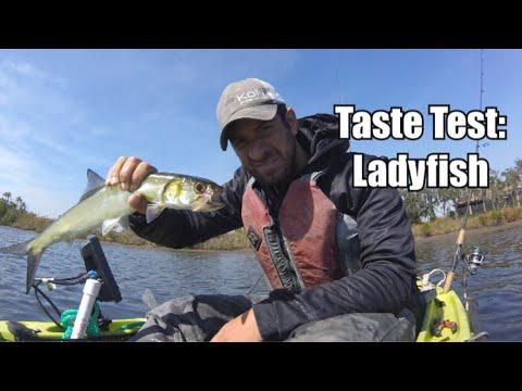 TRASH FISH Catch & Cook: LADYFISH...