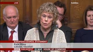 Kate Hoey MP at the European Council Statement