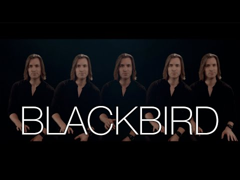Blackbird | The Beatles | Bass Singer Cover