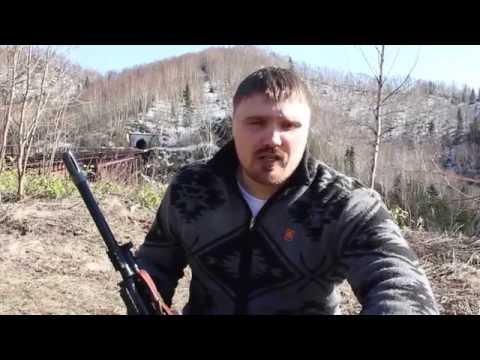видео: Что делать при встрече с медведем