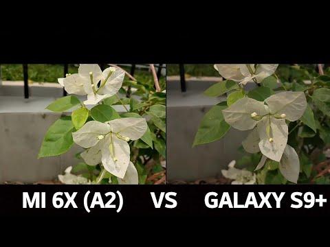 Xiaomi Mi A2 Vs Samsung S9 Mi Tuexpertomovil