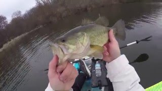 Kayak Pike and Bass Fishing 3/19/2016