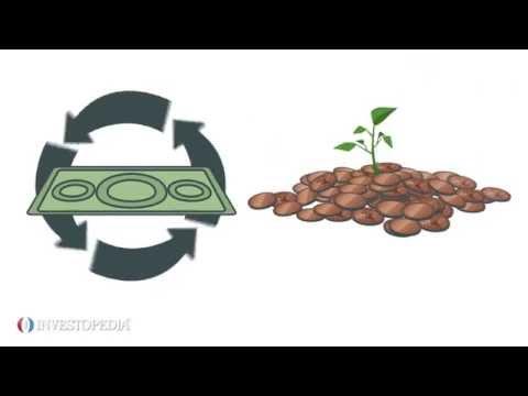 what-is-velocity-of-money-?