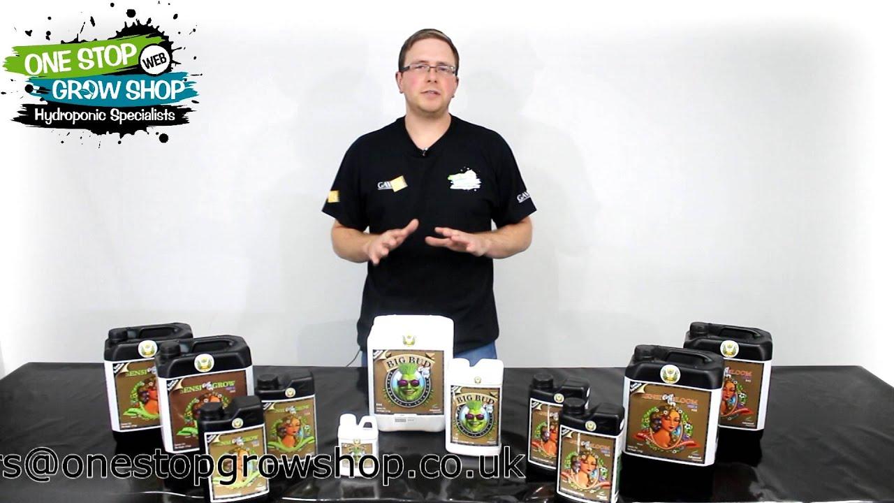 Advanced Nutrients Coco Coir Range Big Bud And Sensi Coco Youtube
