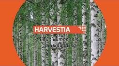 Harvennushakkuiden merkitys metsäomaisuuden hoidossa
