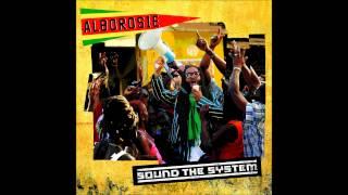Alborosie - Dub The Dancehall (Rock The Dancehall Instrumental)