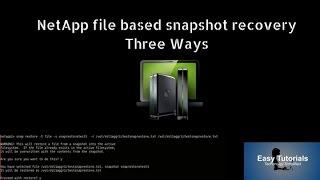 Netapp FIle based Snapshot Recovery from Three ways