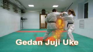 DrobyshevskyKarateSystem:Heian Yondan-Combat Bunkai-2-Gedan Juji Uke-Qinna Stick Disarm