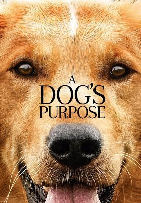 FILM REVIEW: A DOG'S PURPOSE