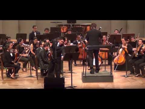 Concierto Carl Nielsen