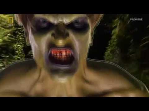 Brain Games Dont Be Afraid Part 01.mp4