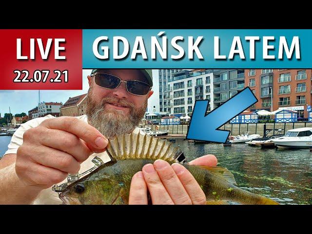 LIVE ➤ Gdańskie Miejskie Łowy - Morska Ekipa + Neptun