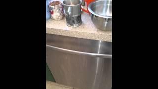 Bosch Dishwasher Diagnostic Mode She - ccwlounge com