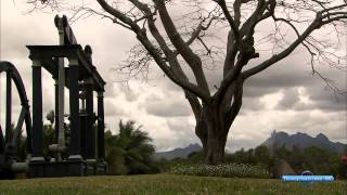 Запах странствий - остров Маврикий и Родригес