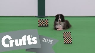 Dog Obedience Championships - Part 2 | Crufts 2015