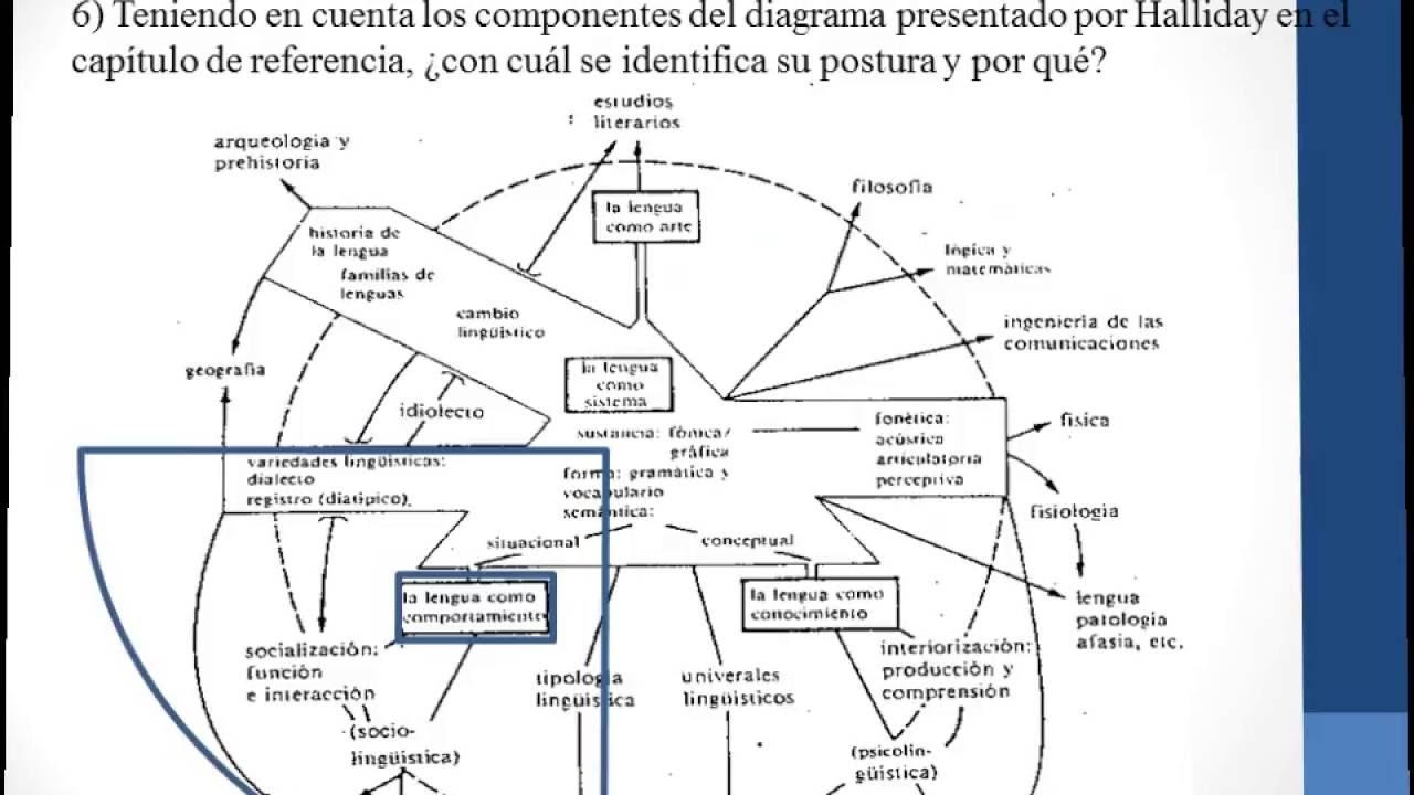 Lujo Diagrama De La Anatomía Lengua Imagen - Imágenes de Anatomía ...