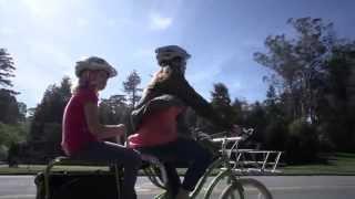 Cargo Bikes - Yuba Bicycles