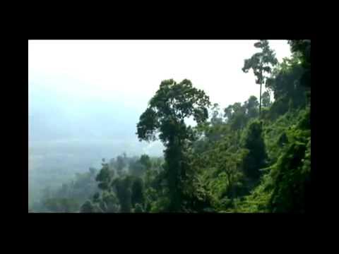 Giới Thiệu Du Lịch Ba Nà Hills, Đà Nẵng (www.vktour.com)