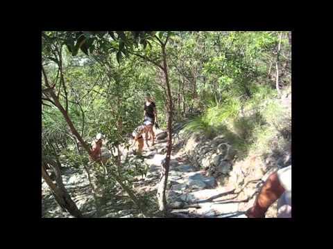 Jessica & Tony climb Mt Coolum