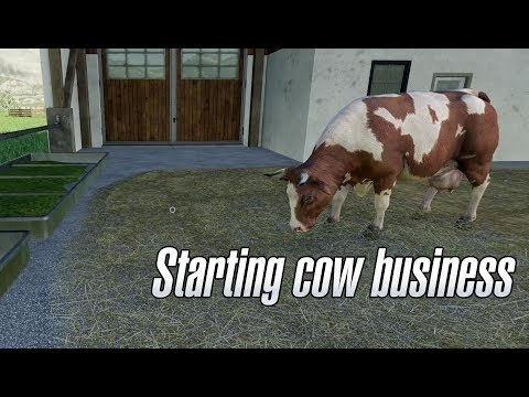 Farming Simulator 19 - We start business with cows