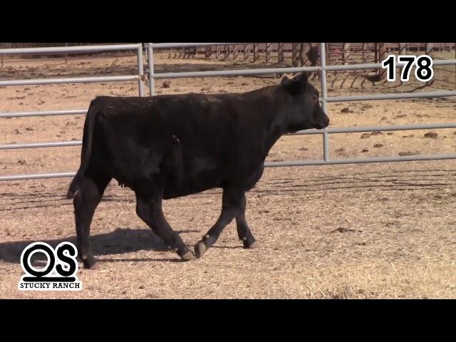 Stucky Ranch Lot 178