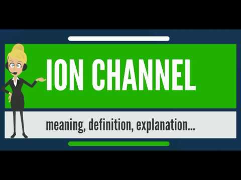 What is ION CHANNEL? What does ION CHANNEL mean? ION CHANNEL meaning, definition & explanation