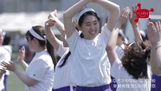 華舞爽翔 第53回体育祭