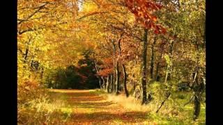 Jesień też jest piękna