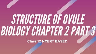 Structure of Ovule Sexual Reproduction in Flowering Plants Biology Chapter 2 Part 3  12TH CLASS