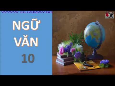 Ngữ văn lớp 10,  Tổng quan Văn học Việt Nam, ngữ văn 10, ôn thi