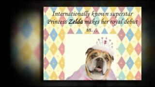 Princess Zelda And The Frog By Carol Gardner -- Book Trailer
